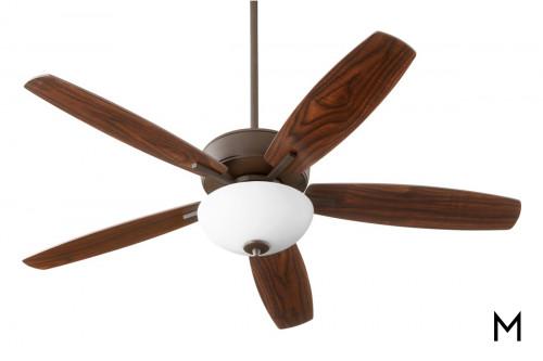 Transitional Ceiling Fan