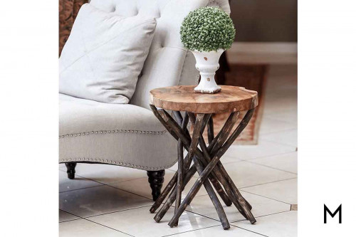 Branched Out Teak End Table