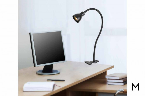 Gooseneck Clamp on Light in Black