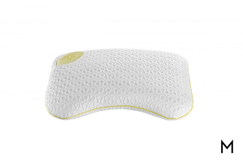 Level 0.0 Pillow