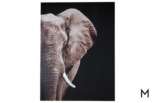 Elephant Canvas Wrap Wall Art
