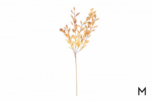 Decrative Botanitca Golden Leaf
